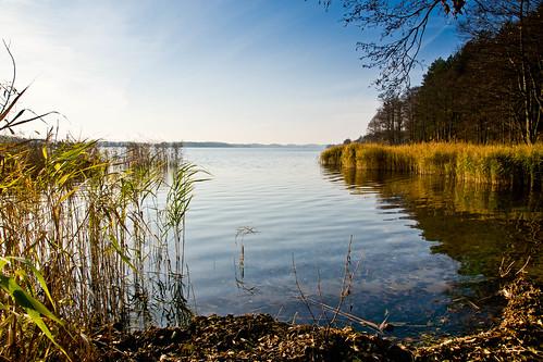 Lūšių ežeras