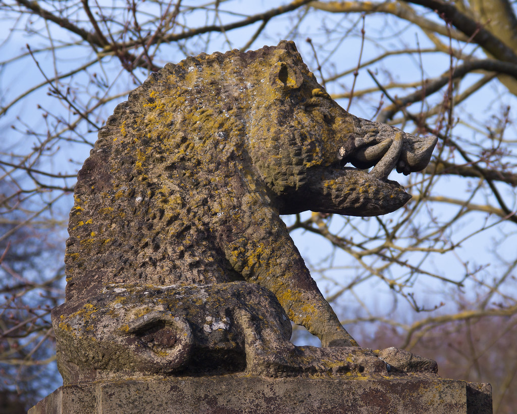 Charlecote boar