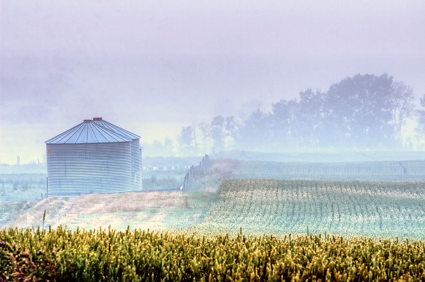 Smoke and Grain Bins