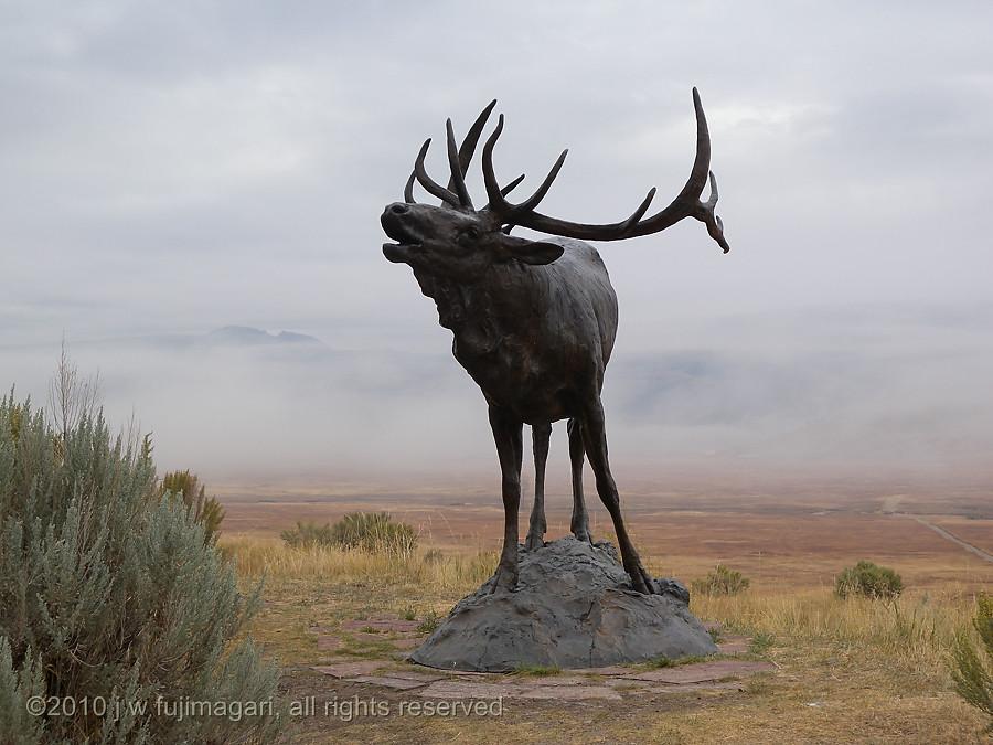 NMWA Elk Statue