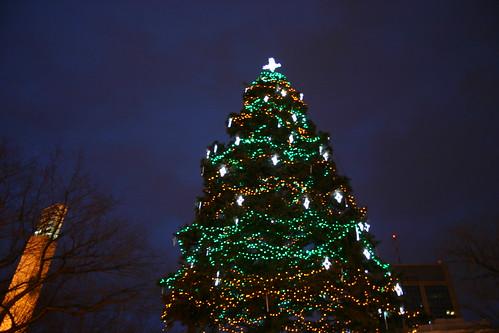 Holiday Light Up