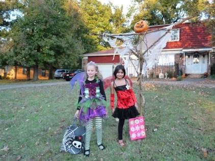 Attitude Fairy and Ladybug