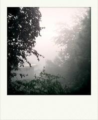 2010-09-17-07-41-31-387.jpg