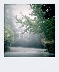 2010-10-06-08-03-36-045.jpg