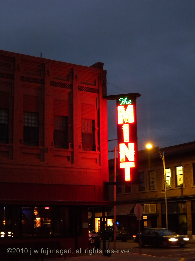 The Mint by Night