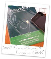 iPhone4+b-microSIM