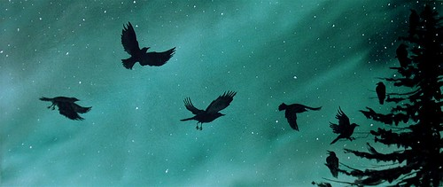 Northern Lights Crows Roost
