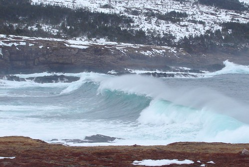 Curling into Cantwell's Cove