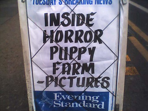 Horror Puppy Farm ... whatever that is
