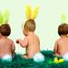 little bunnies foo foo