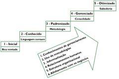 MMGP - Um modelo brasileiro de maturidade em gerenciamento de projetos (2/6)