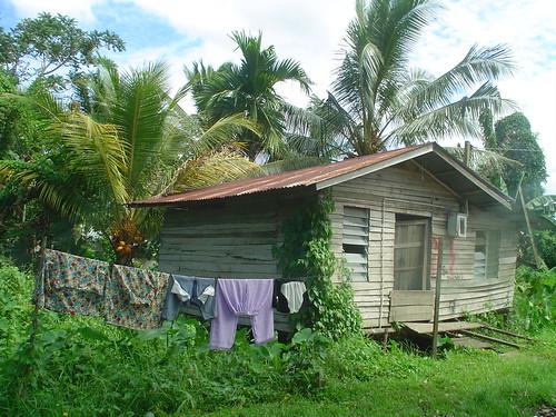 2006-04-24_kuching 004