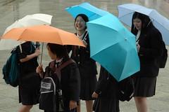 Schoolgirls in the Rain