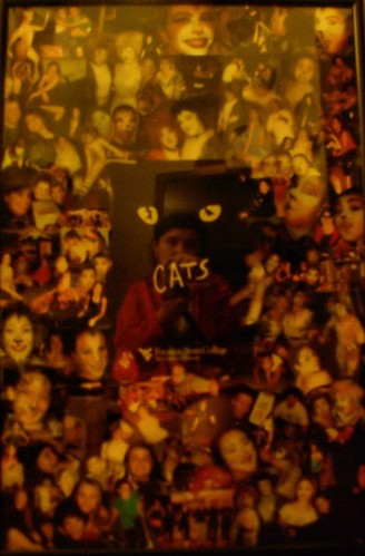 me and my CATS collage