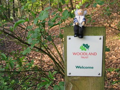 Welcome to the Woodland Grandad, not welcome to the signpost!