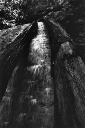 falls_logs_vertical_800