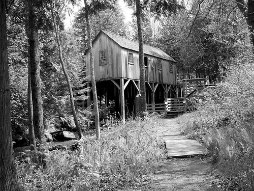 Black and White Saw Mill