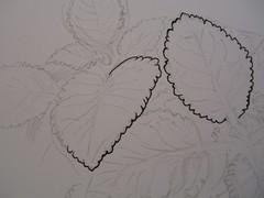 01 Pencil Sketch_Inking 150406