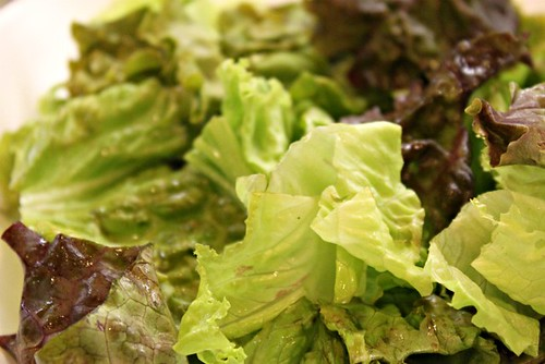Preserving Lettuce in Mason Jars_3