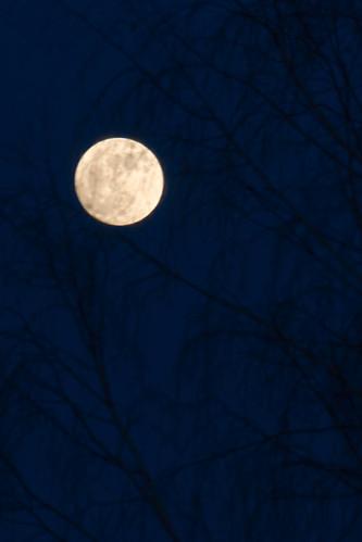 Pilnatis | Full Moon