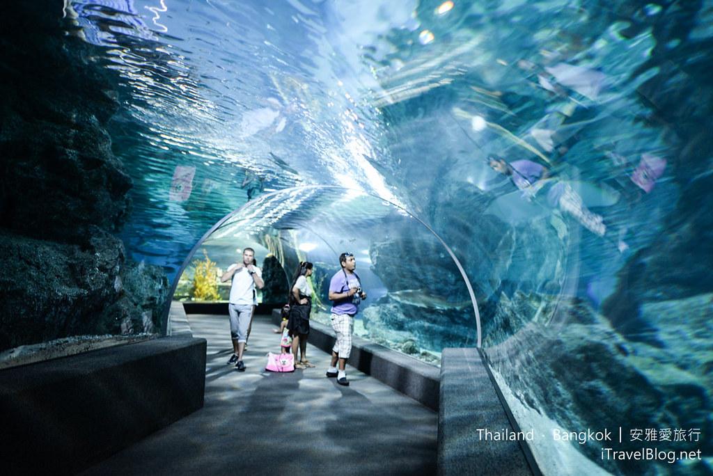 Siam Ocean World Bangkok 46