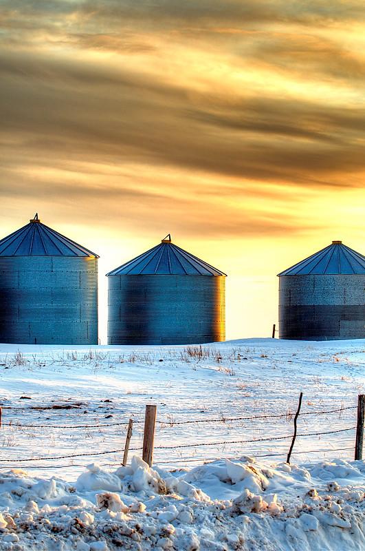 Golden Grain Bins
