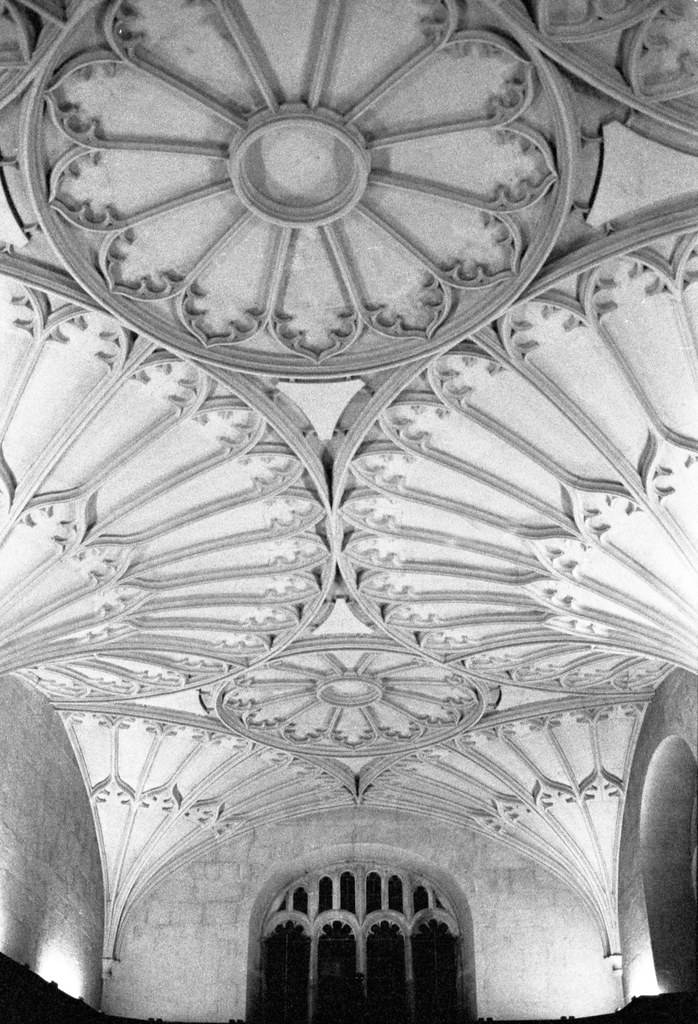 Bodleian library ceiling 2 | Christmas Light Night | Oxford
