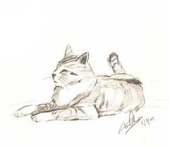 2000 (Sept) Fox