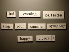 Haiku: hot evening outside/sing your summer symphony/happy cicadas