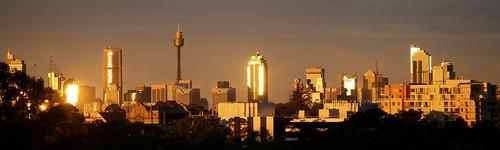 Sydney Sunshine
