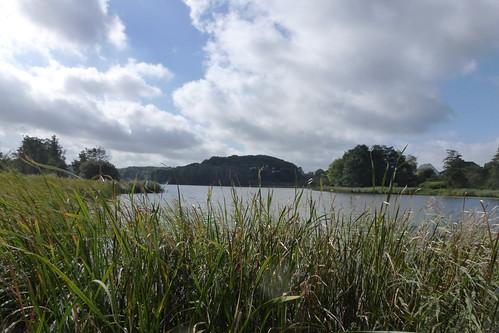Nyhus sø