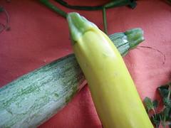 csa share july 10th zucchini