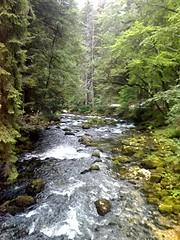 rivière Vallorbe4