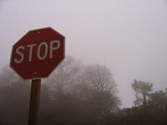 Foggy Stop