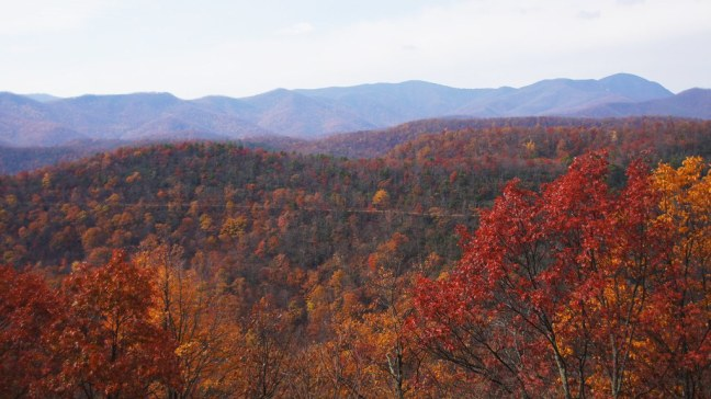 Fall foliage on the Blue Ridge Parkway
