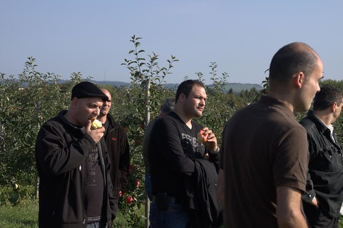 Sampling Apples