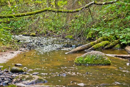Papunžės upelis