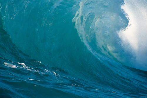 《tsunami:海嘯》~