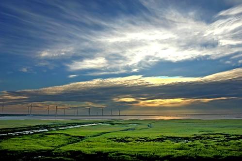 Kaomei Wetlands- HDR Version