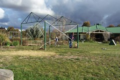 The New Shade Structure - yet to be named