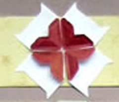 photocornerflower2
