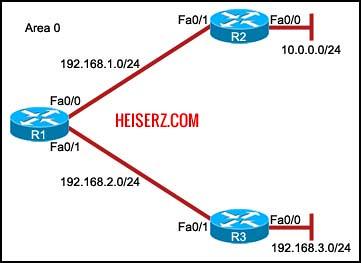 6841460143 c810449330 z ERouting Final Exam CCNA 2 4.0 2012 100%