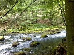 rivière Vallorbe9