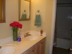 upstairs guest bath