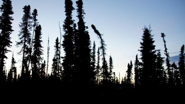 Midnight in Alaska