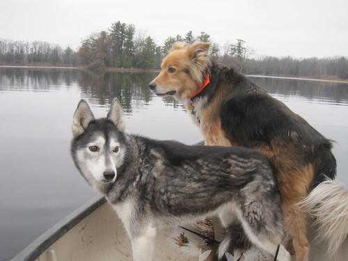 2011-11-25 Breaking Ice for 1 last canoe ride 009