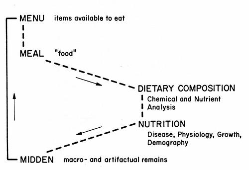 menu meal midden model