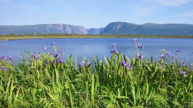 Western Brook Pond Tour
