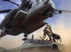 US Marine photo, al Anbar,  3/18/06 BlackHawk and a Super Stallion