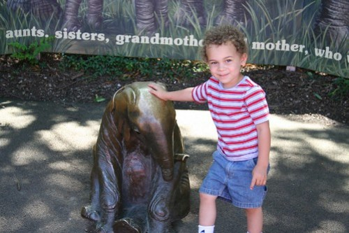Aidan at the Zoo